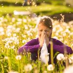 алергии при деца
